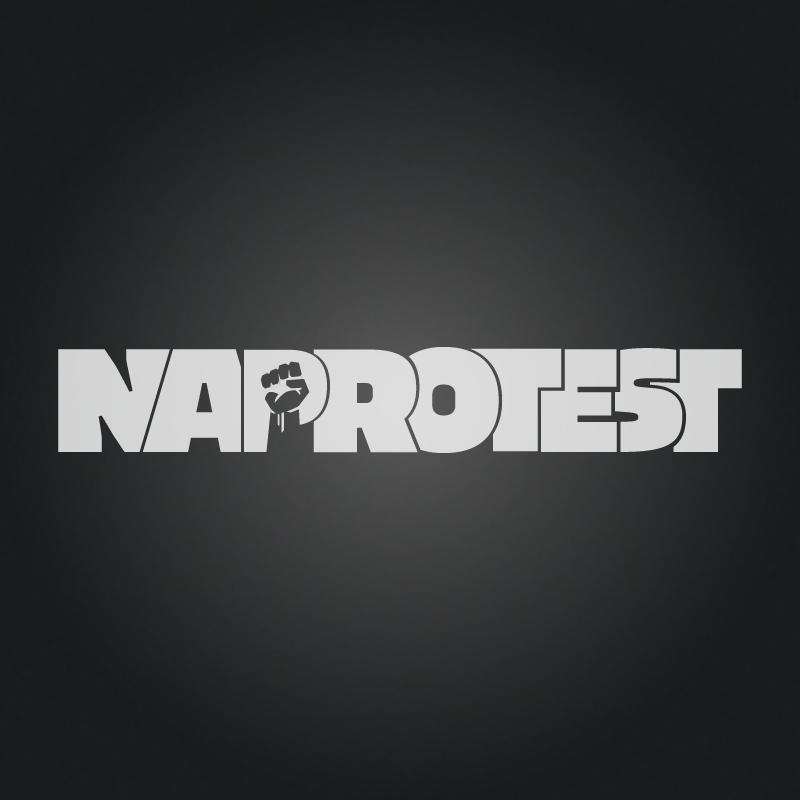 Projekt loga sklepu Naprotest.pl