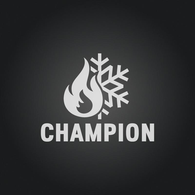 Projekt Logotypu Champion